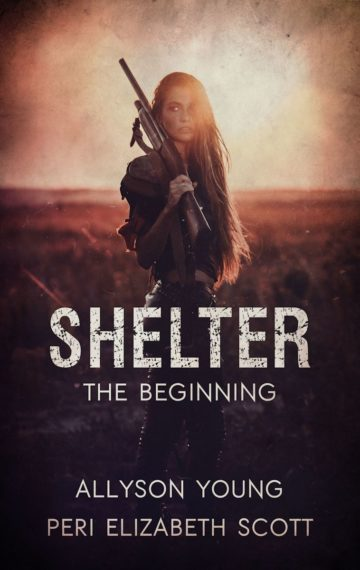 Shelter the beginning book 1