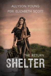 Shelter: the return